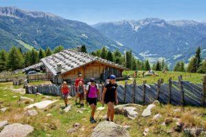 ahrntalersunnsatwege(c)touristinfo-ahrntal-gorfer(139)