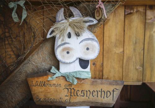 mesnerhof-6154
